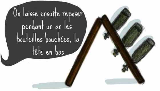 bulles_lucile2