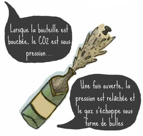 bulles_lucile3