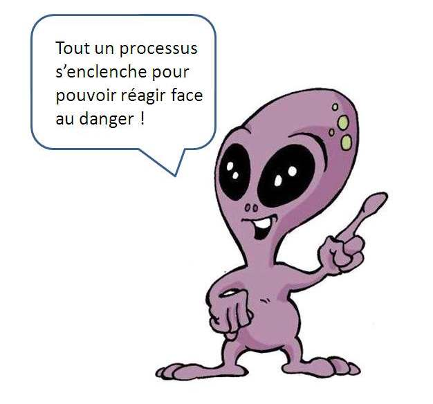 chair_poule4