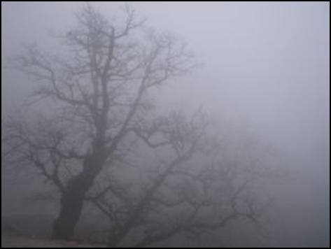 nuage_6